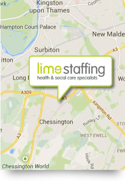 Lime Staffing Map